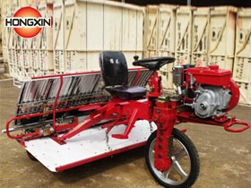 wheat transplanting machine